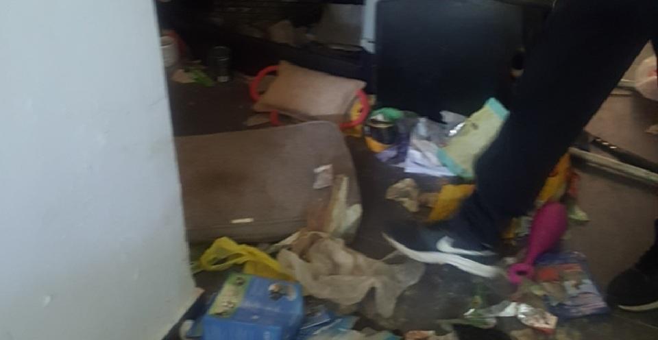"""Photo of צפו: הפקחים הגיעו להציל כלבה מוזנחת והזדעזעו לראות מה קורה בדירה בה גרים גם בני אדם בלב העיר פ""""ת"""