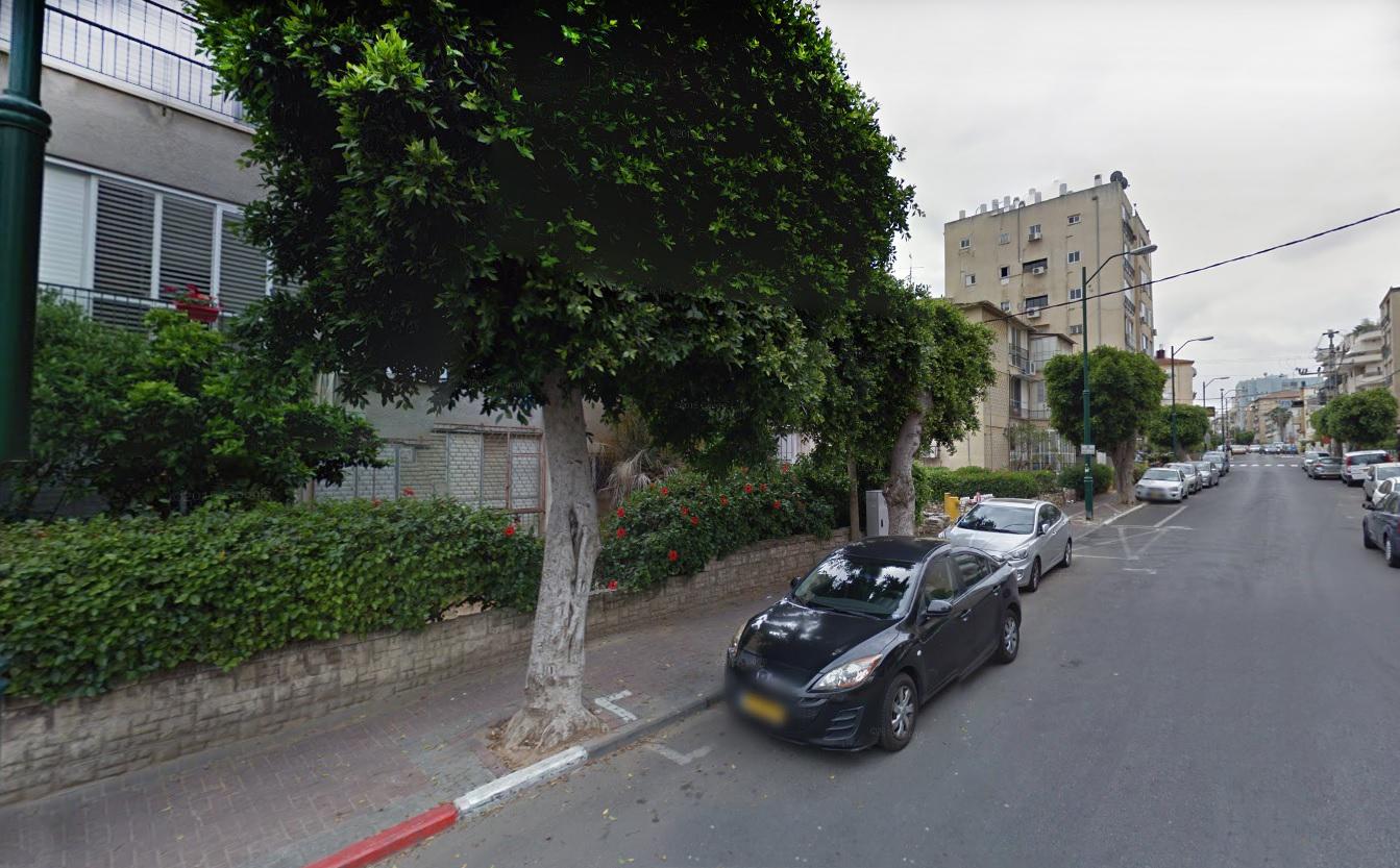 Photo of שפת רחוב בסימן עצי הפיקוס