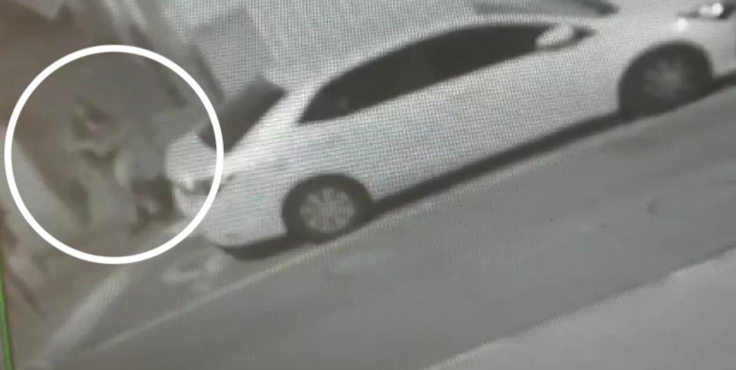 Photo of תושבת חיפה נתפסה אמש בחשד שהיא השחיתה מזוזות בשכונת הדר