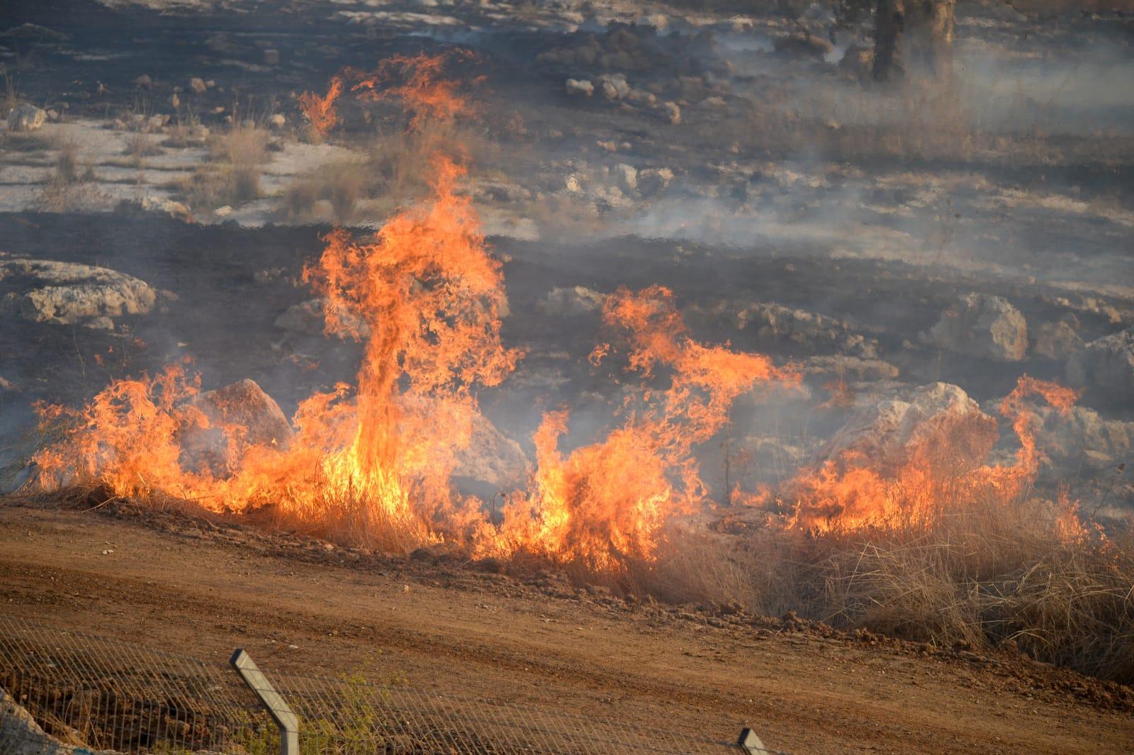 Photo of בשל מזג האוויר: צוותי כיבוי אש רבים ומטוסי כיבוי פועלים משעות הבוקר בשריפות גדולות בשטחים סמוך לראש העין ובאזור התעשייה בעיר