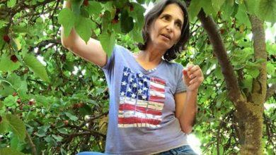 """Photo of הלכה לעולמה המורה האהובה מביה""""ס """"גורדון"""" בחולון שעיר שלמה התגייסה להציל אותה. נעמה ברזילי הייתה בת 51 במותה"""
