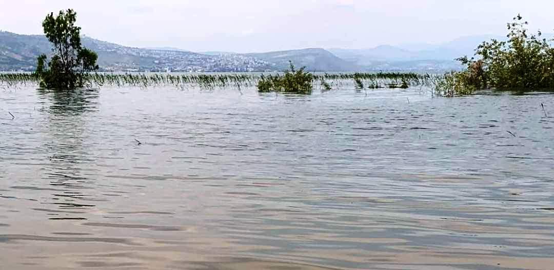 הכנרת בשיא יופייה. צילום: אורי שור, רשות המים.