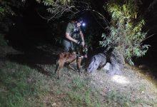 """Photo of יחידת הכלבנים ערכה הלילה חיפושים נרחבים אחר תושב ר""""ג בן 67, שנעדר מזה שבועיים מביתו ויש חשש לחייו"""