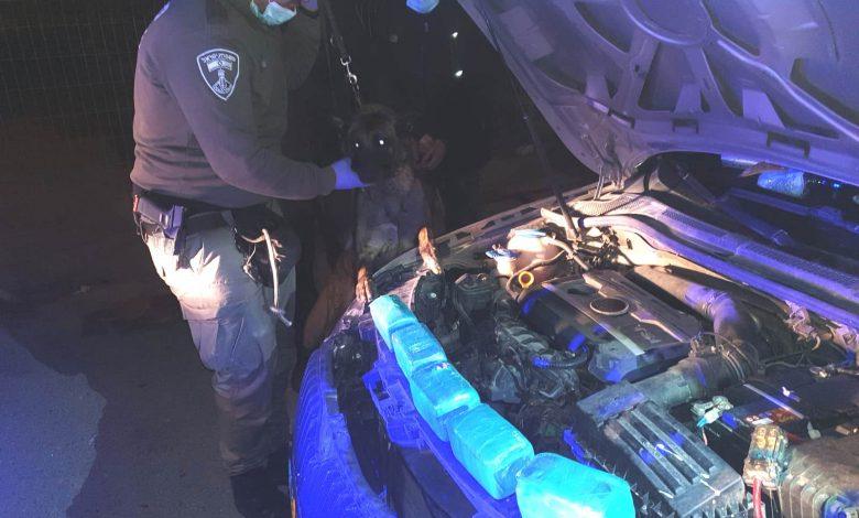 צילום דוברות משטרה