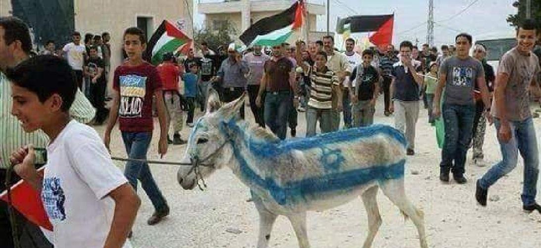 Photo of תמונות קשות: מה עלה בגורלו של חמור שנצבע בדגל ישראל במהלך ההפגנות בעזה. אכזריות לשמה