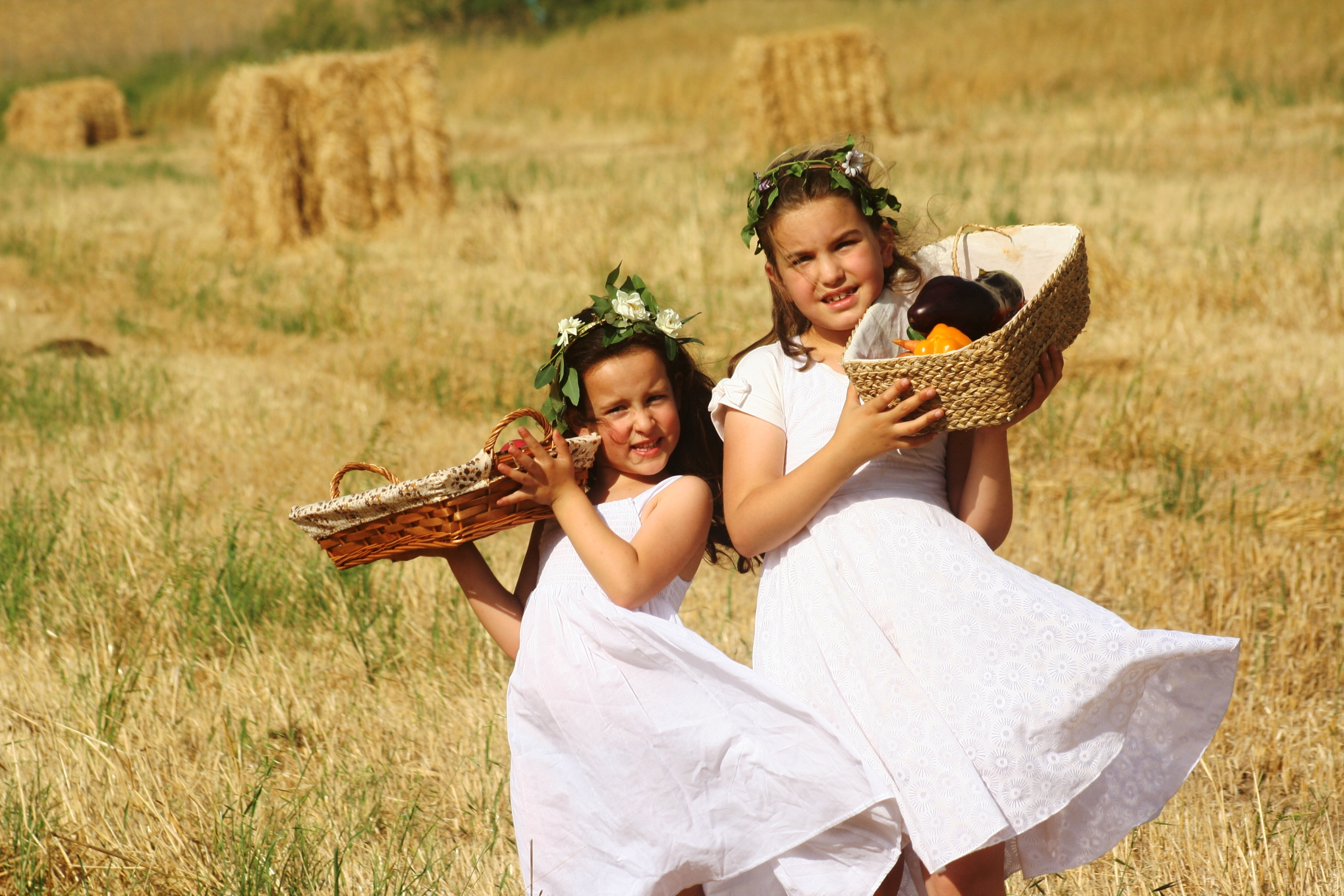 Photo of חגיגה בלבן: פסטיבל חקלאי באווירה כפרית