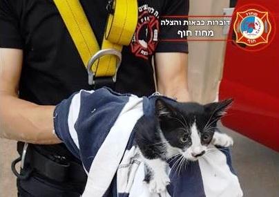Photo of הצילו ת'חתול: לוחמי האש נלחמו להציל חיי גור חתולים