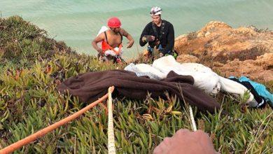 מבצע חילוץ הצעיר מהצוק בנתניה. צילום: דוברות כיבוי נתניה