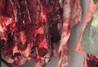 Photo of חצי טון של בשר לא ראוי למאכל אדם נתפס במשולש ויועד להפצה באזור הצפון והשרון