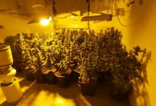Photo of מעבדת סמים גדולה התנהלה בבית מלון במרכז העיר נתניה. בעלי המלון נעצר עם עוד שני מקורבים. החשד: עוד עובדי מלון עסקו בסחר בסמים