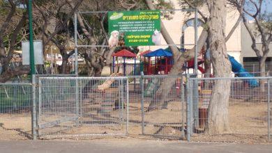 Photo of פארק מרכזי לשחרור כלבים נפתח בקריית ביאליק