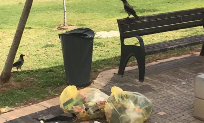 האשפה שהפחים כבר לא הכילו ברמת הנשיא חיפה. צילום: פייסבוק