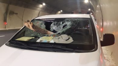"Photo of עץ נפל בכביש 6 על נהג ורכבו סמוך למנהרות יוקנעם. הנהג מובהל לרמב""ם"