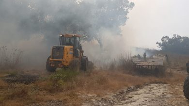 Photo of הצפון בוער: שריפת ענק ליד קיבוץ דליה, התושבים מסתגרים בבתיהם