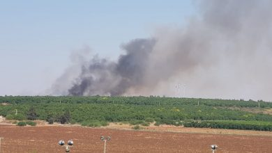 השריפה באזור גבעת טל. צילום: דוברות כבאות