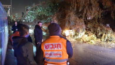 Photo of תאונה קטלנית הלילה ברחוב העצמאות בחיפה: מונית פגעה בהולך רגל, שמותו נקבע כעבור זמן קצר