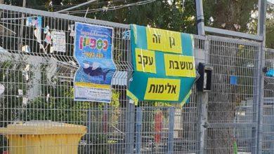 """האם עיריית חיפה יצרה בעיית """"טלאי על טלאי"""" בכדי לפתור את בעיית גן לילך? צילום: הרשת"""