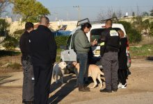 Photo of שימו לב: מחלקת חזות העיר קרית אתא תגברה את הפקחים ולוכדי הכלבים שיפעלו ברחבי העיר במטרה למגר את תופעת הכלבים המשוטטים