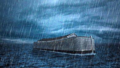 Photo of סוף מעשה במחשבה תחילה: עוברים את הקורונה בתיבת נוח