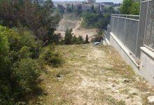 Photo of עיריות חיפה ונשר נערכות לקיץ ומבצעות עבודות גיזום וחישוף עשבייה בין אזורים מיושבים ליער והחורש
