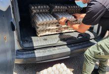 Photo of המשטרה ומשרד החקלאות תפסו ומשמידים 1400 ביצים שעמדו למכירה בשוק עכו והן מסוכנות למאכל אדם